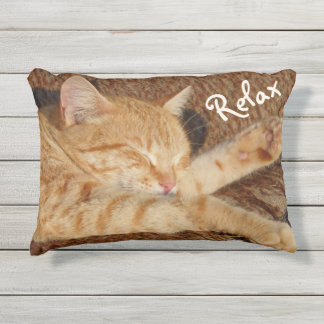 Entspannende Katze Kissen Für Draußen