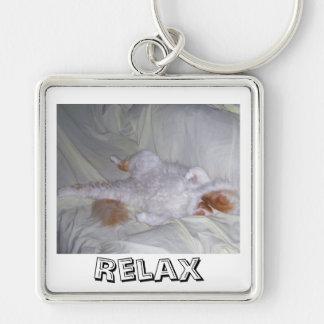 Entspannende Katze Schlüsselanhänger