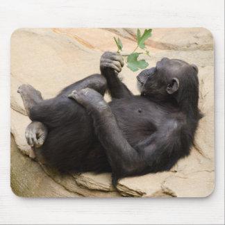 Entspannender Schimpanse Mousepad