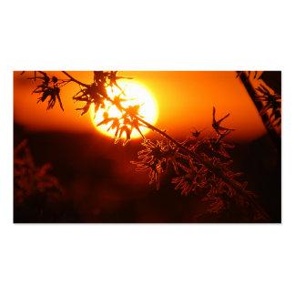Entspannender Sonnenuntergang Visitenkartenvorlage
