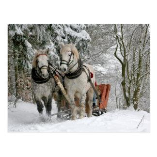 Entwurfs-Pferdeweihnachten Postkarte