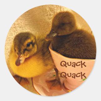 Entzückende Enten sagen Quaken Runder Aufkleber