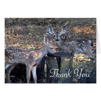 Entzückende gepunktete Kitze danken Ihnen Karte