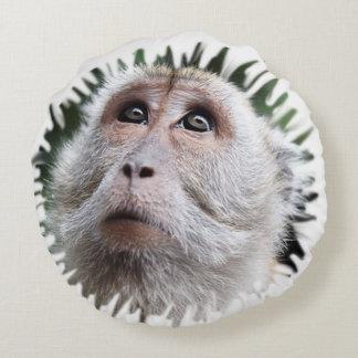 entzückender Affe Rundes Kissen