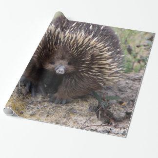 Entzückender australischer Echidna Einpackpapier