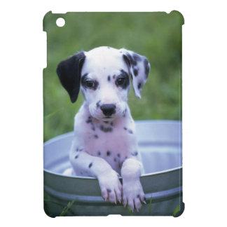 Entzückender dalmatinischer Welpe wartete ein Bad iPad Mini Hülle