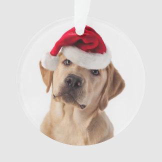 Entzückender gelber Labrador mit Ornament