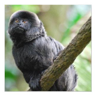 Entzückender Goeldi Affe Quadratische 13,3 Cm Einladungskarte