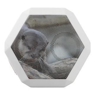 Entzückender Otter Weiße Bluetooth Lautsprecher