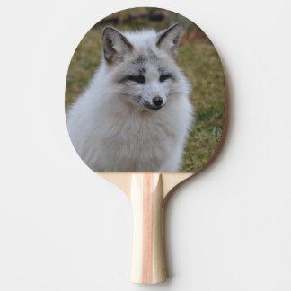 Entzückender weißer Fox Tischtennis Schläger