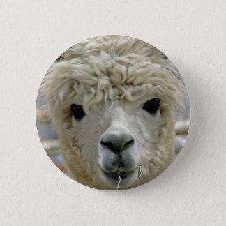 Entzückendes Alpaka Runder Button 5,7 Cm