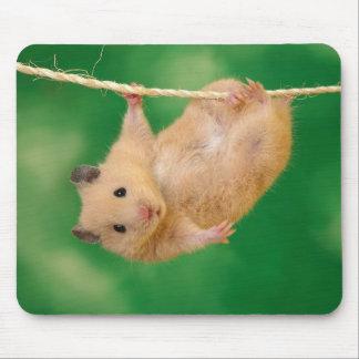 Entzückendes Hamster mousepad