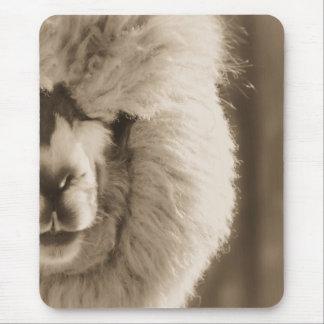 Entzückendes Lama/Alpaka Mousepad