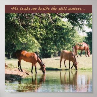Er führt mich neben dem ruhigen Wasser… Poster
