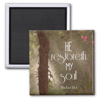Er restoreth mein Soul-Bibel-Vers Quadratischer Magnet