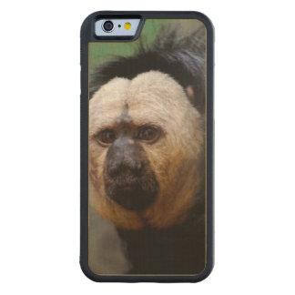 Erblassen Sie gegenübergestellten Saki Affen Bumper iPhone 6 Hülle Ahorn