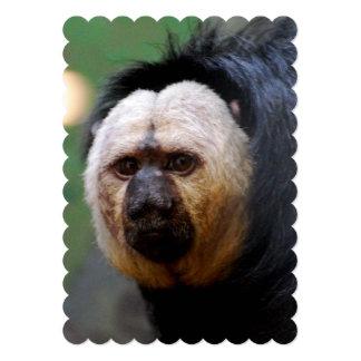 Erblassen Sie gegenübergestellten Saki Affen Individuelle Einladungskarte