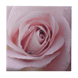 erblassen Sie - rosa Rose Keramikfliese