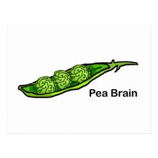 Erbsen-Gehirn Postkarte