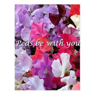 Erbsen sind mit Ihnen süße Erbsen Postkarte