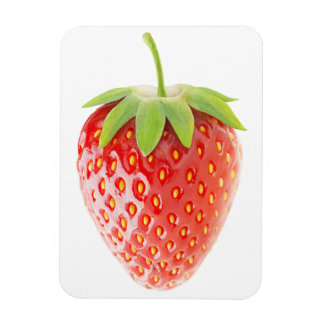 Erdbeere Magnet