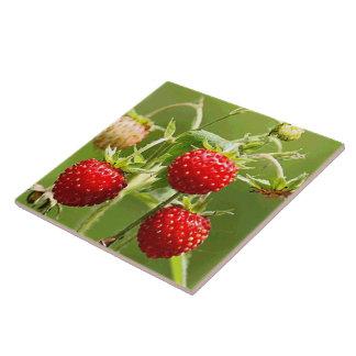Erdbeernatur-Kunst-Mode Große Quadratische Fliese