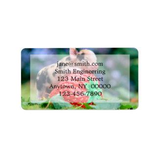 Erdbeerschwein Adressaufkleber