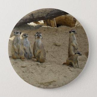 Erdmännchen Familie Runder Button 10,2 Cm