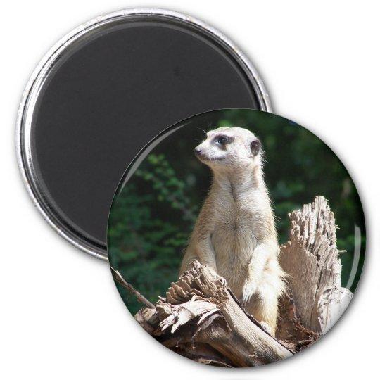 Erdmännchen Runder Magnet 5,7 Cm