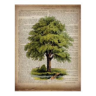 Erdtag-ÖKO-Wörterbuch druckt Vintagen Eichenbaum Postkarte