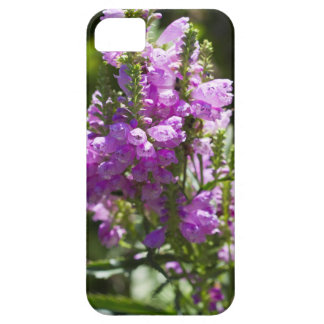 Ergebene Blume oder Drache-Blume Etui Fürs iPhone 5