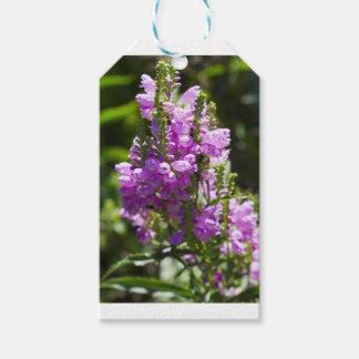 Ergebene Blume oder Drache-Blume Geschenkanhänger