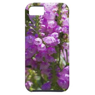 Ergebene Blume oder Drache-Blume iPhone 5 Schutzhüllen