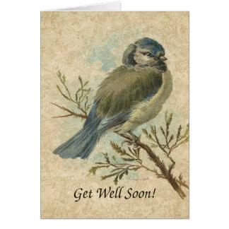 Erhalten Sie Brunnen bald, Vintager Bluetit Vogel Karte