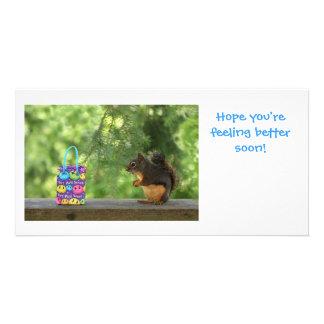Erhalten Sie wohles Eichhörnchen Photo Karten