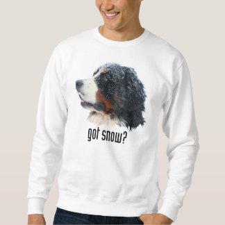 erhaltener Schnee? Sweatshirt