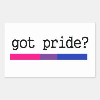 Erhaltener Stolz? Bisexueller Bi-Stolz-Aufkleber Rechteckiger Aufkleber