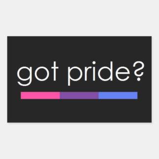 Erhaltener Stolz? Bisexueller Stolzaufkleber Rechteckiger Aufkleber