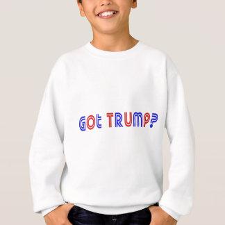 Erhaltener Trumpf Sweatshirt