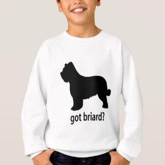 Erhaltenes Briard Sweatshirt