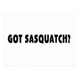 Erhaltenes Sasquatch? Postkarten