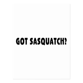 Erhaltenes Sasquatch? Postkarte