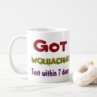 Erhaltenes Wolbachia? Hundertsorgfalt durch Kaffeetasse