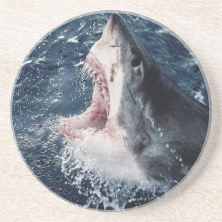 Erhöhter Haifischmund offen Untersetzer