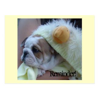 Erinnerungs-Postkarten-englischer Bulldoggen-Welpe Postkarte