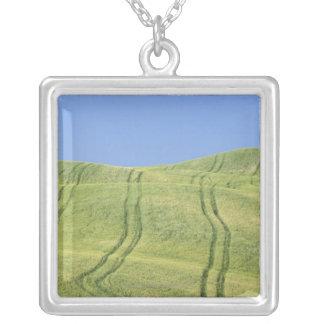 Ermüden Sie Bahnen auf dem Weizen-Gebiet, Val Versilberte Kette