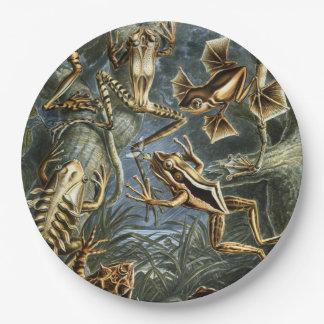 Ernst Haeckel-Vielzahl der exotischen Frösche: Pappteller