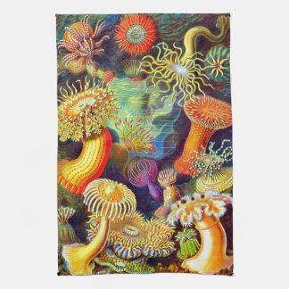 Ernst Haeckels Seeanemonen-Geschirrtuch Küchentuch