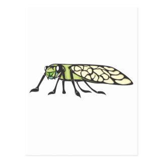 Ernstes Zikaden-Insekt Postkarte