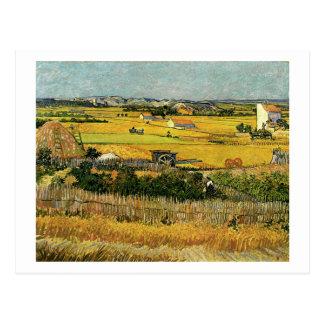 Ernte am La Crau, Vincent van Gogh Postkarte